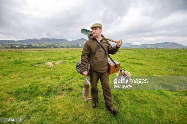 Professional rabbit catcher Steven McGonigal poses for a photograph with his dog Fudge and a 'dispatched' our caught rabbit as he hunts for rabbits...