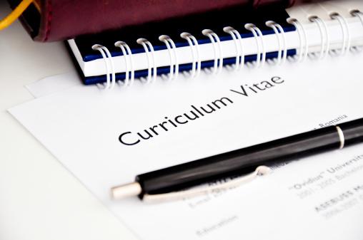 professional resume or curriculum vitae 185680008
