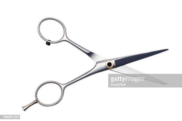 Professional Scissors (path)