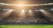 A professional soccer stadium with crowd made in 3D.