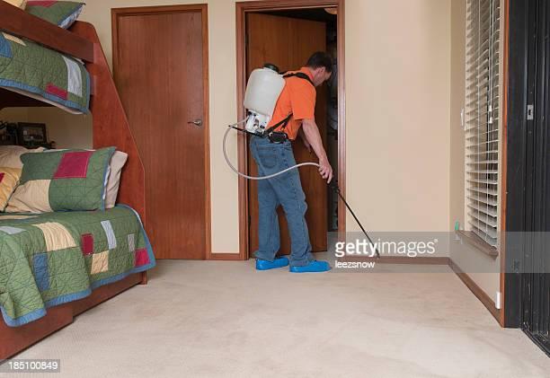 Professional Spraying Carpet