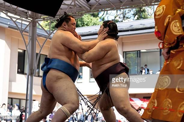 Professional sumo wrestler Endo Shota pushes his opponent during the Ceremonial Sumo Tournament or Honozumo at the Yasukuni Shrine on April 4 2014 in...