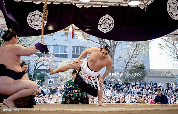 Professional sumo wrestler Kakuryu Rikisaburo performs Dohyoiri the ringentering ceremony during the Ceremonial Sumo Tournament or Honozumo at the...