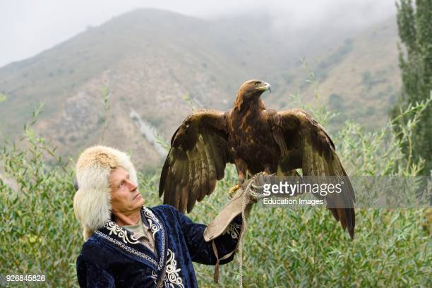 Professional trainer holding Golden Eagle at Sunkar Raptor Center in mountains of Alma Arasan Gorge Almaty Kazakhstan