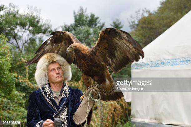Professional trainer holding Golden Eagle with spread wings at Sunkar Raptor Center Almaty Kazakhstan