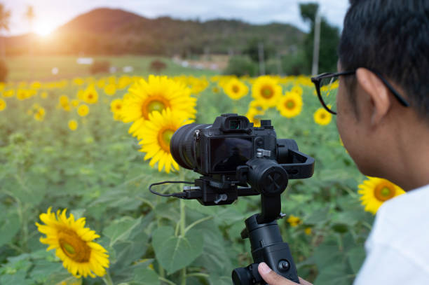 Professional videographers are shooting flowers on the farm. Photographer by outdoors.