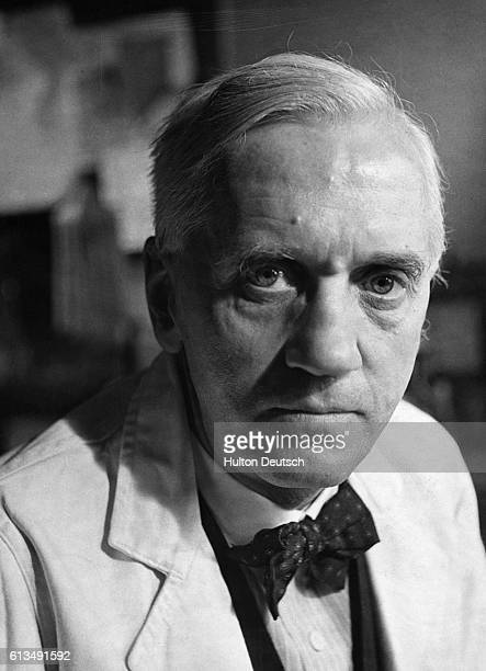 Professor Alexander Fleming the Scottish bacteriologist who discovered penicillin in his laboratory at St Mary's Hospital Paddington