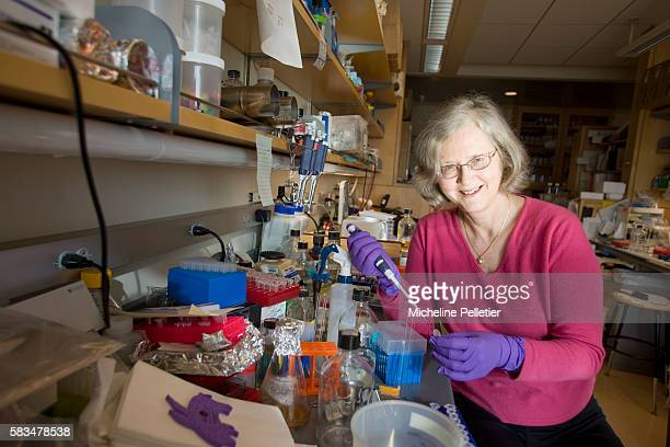 Elizabeth Blackburn Pictures and Photos - Getty Images