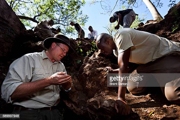 Professor Lee Berger of Wits University Paleontology Department works with his excavations staff at the Malapa Fossil site on the Malapa Nature...