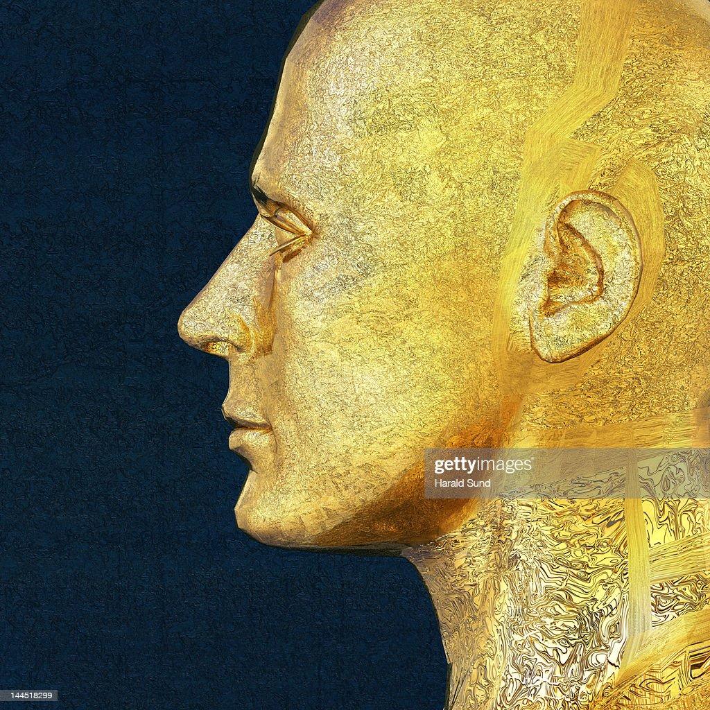 Profile of a golden metallic male head : Bildbanksbilder