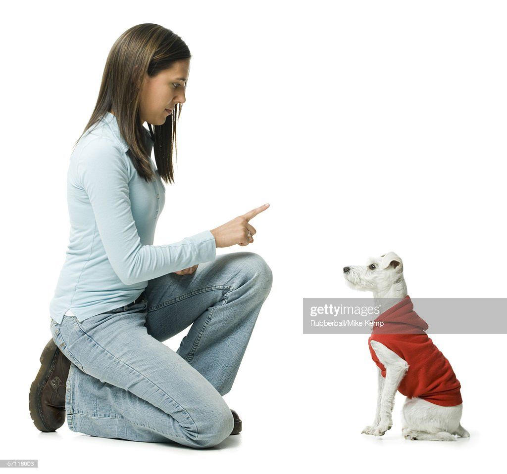 Profile of a young woman giving instructions to her dog : Stock Photo
