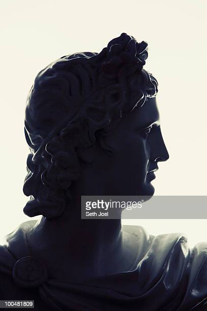 Profile of Bust in Museums