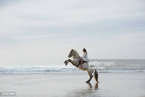 Profile of horse and rider rearing on beach