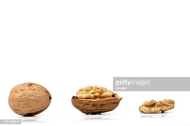 profile of walnut - nutshell stock photos and pictures