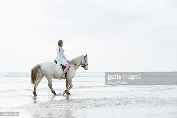 Profile of woman on horse at beach