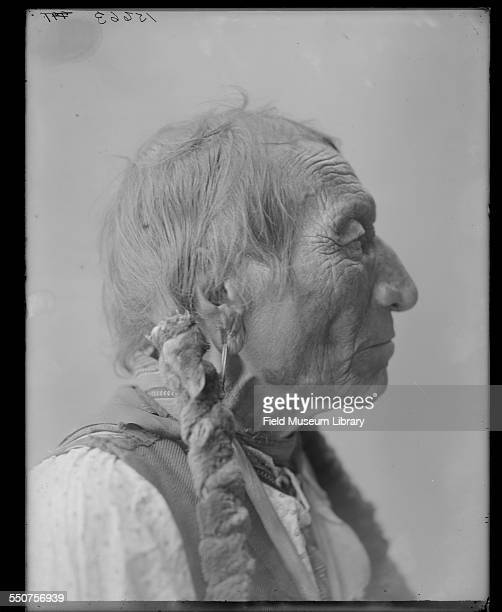 Profile portrait of Native American Oglala Sioux Chief Flat Iron at the Louisiana Purchase Exposition St Louis Missouri June 6 1904