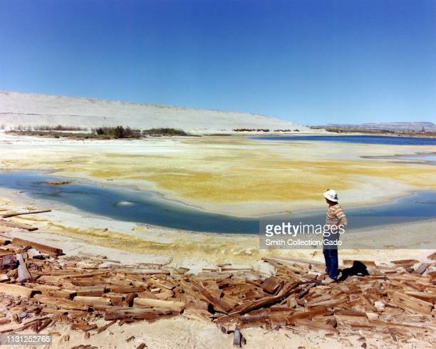Profile view of a man standing on wooden debris, on a sunny day, looking over the tailings disposal area at a uranium processing mill in the American...