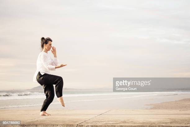 Profile woman poised practicing Wu Tai Chi full frame on a concrete pier sunset behind her