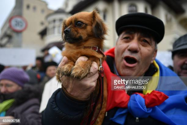 Pro-government demonstrator holds a dog in his hand as he takes part in a rally in front of the presidential residence Cotroceni Palace in Bucharest...