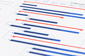 Project management and gantt chart