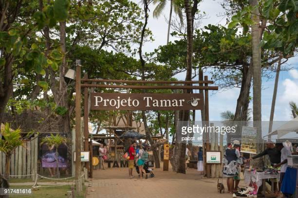 Projeto Tamar Entrance Bahia Praia do Forte