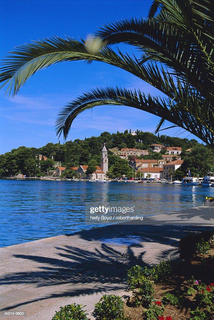 Promenade and harbour, Cavtat, Croatia : Stockfoto