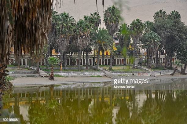 "promenade at huacachina oasis lake - ""markus daniel"" stock-fotos und bilder"