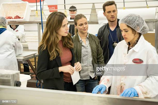 "Promise"" Episode 502 -- Pictured: Marina Squerciati as Kim Burgess, Tracy Spiridakos as Hailey Upton, Jesse Lee Soffer as Jay Halstead, Susana..."