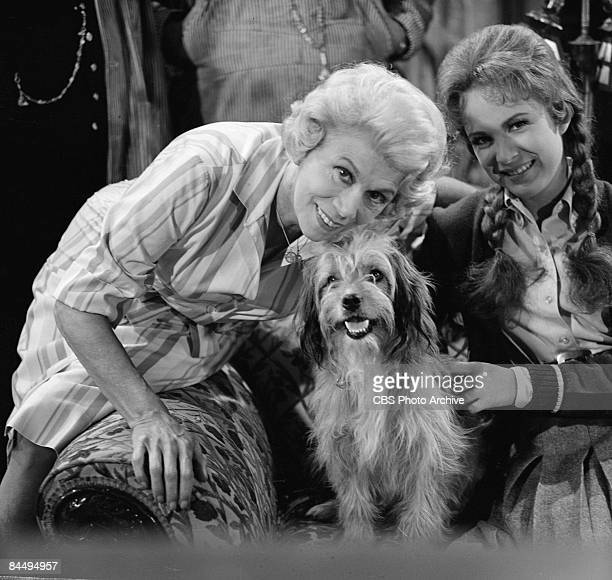 Promotional portrait of American actresses Bea Benaderet as Kate Bradley and Linda Henning as Betty Jo Bradley Elliot along with canine actor Higgins...