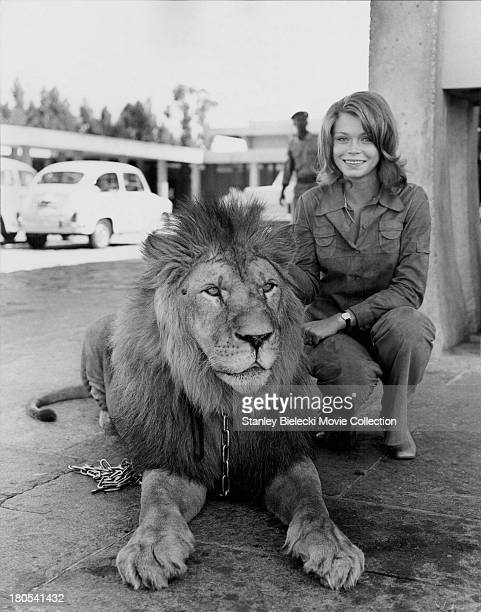 Promotional shot of actress Neda Arneric and a lion as she appears in the movie 'Shaft in Africa' 1973