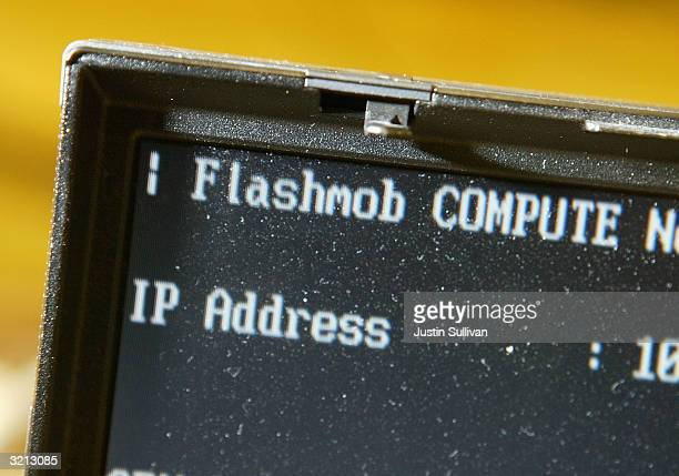 Prompt for Flashmob 1 is seen on a laptop screen April 3, 2004 at the University of San Francisco in San Francisco, California. Hundreds of computer...