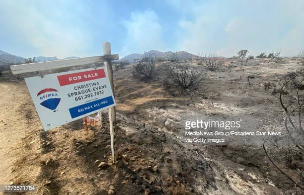 Property for sale sign stills stand over burned out land along Cima Mesa Road after the Bobcat Fire sweep through in Juniper Hills on Saturday...