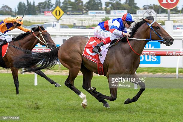 Property ridden by Craig Williams wins the Ladbrokes Blue Diamond Preview at Caulfield Racecourse on January 26 2017 in Caulfield Australia