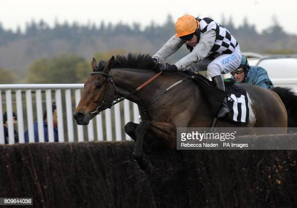 Prophete De Guye ridden by Timmy Murphy jumps the last to win The Atlantic Enterprises Handicap Steeple Chase during the November Meeting at Ascot...