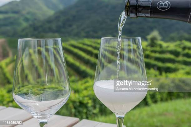 Prosecco is poured into the glass in a vineyard on July 12 2019 in Conegliano ItalyThe Conegliano and Valdobbiadene regions of northeast Italy have...