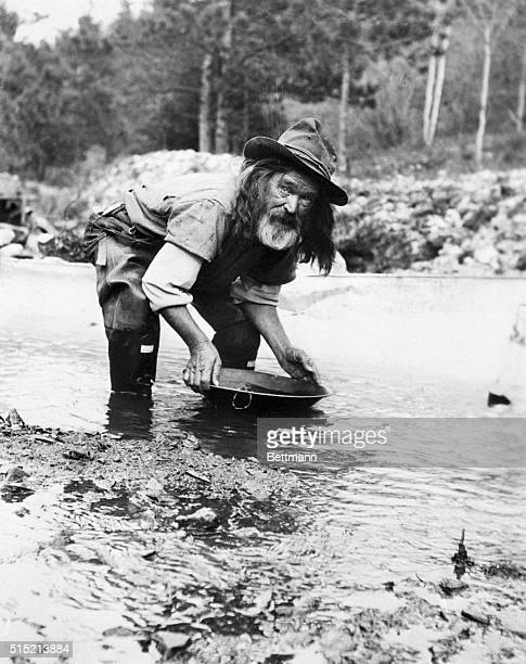 Prospector pans for gold during a revival of gold mining in the west