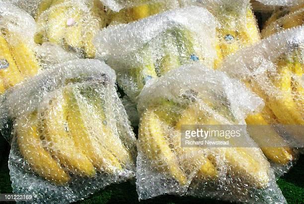 Protected Bananas