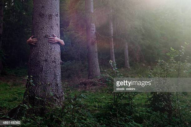 protecting nature - tree hugging stock pictures, royalty-free photos & images