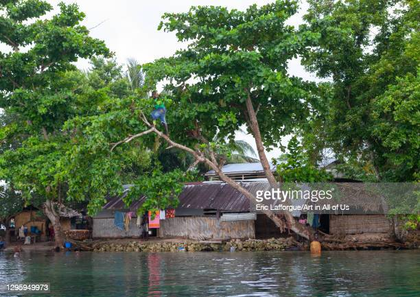 Protection against rising sea levels in a costal village, Autonomous Region of Bougainville, Bougainville, Papua New Guinea on October 10, 2009 in...