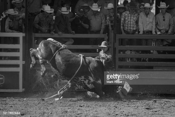 Protection athlete Brody Moss comes to assist a rider after he was bucked off in the Steer Ride competition during the 2018 Mount Isa Rotary Rodeo at...