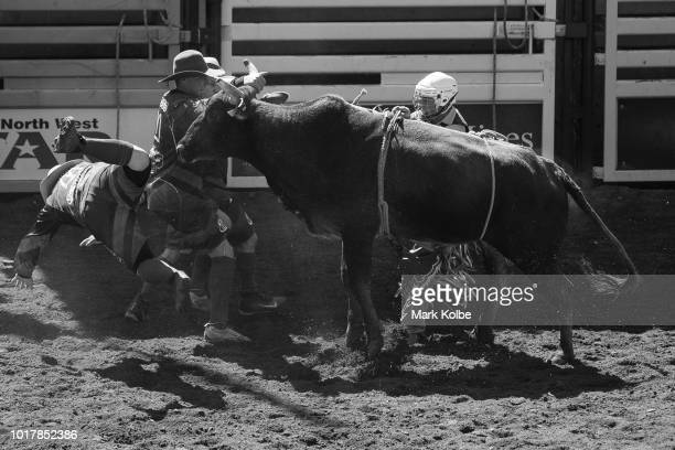 Protection athlete Lincoln Brown is thrown by a steer as Brody Moss and Darryl Chong come to assist a rider after he was bucked off in the Steer Ride...