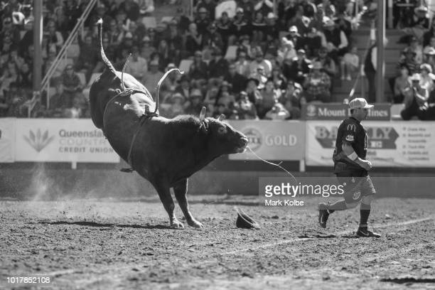 Protection athletes Darryl Chong evades a bucking bull during the Bull Ride competition of the 2018 Mount Isa Rotary Rodeo at the Buchanan Park...