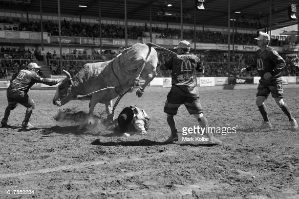 Protection athletes Lincoln Brown Darryl Chong and Brody Moss distract a bull and protect a fallen rider during the Bull Ride competition of the 2018...