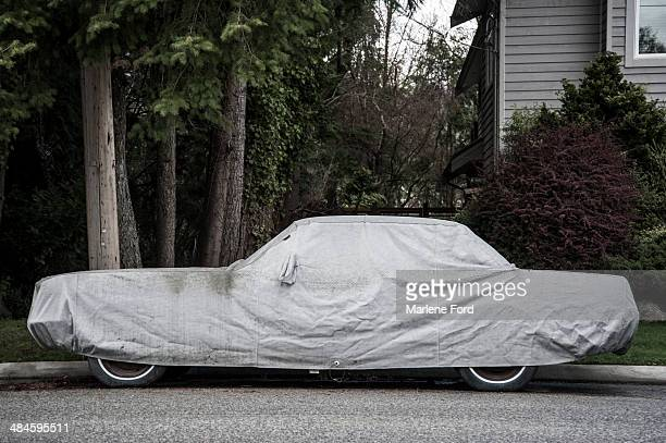Protective covering over car