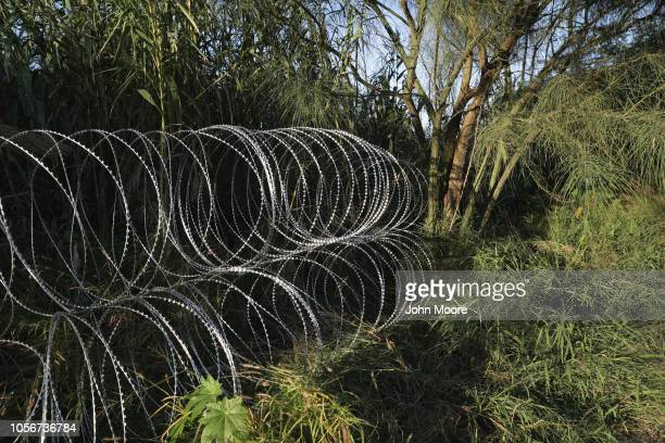 Protective wire stretches into a tree bank after being installed by US Army troops at the USMexico border on November 3 2018 in Hidalgo Texas US...