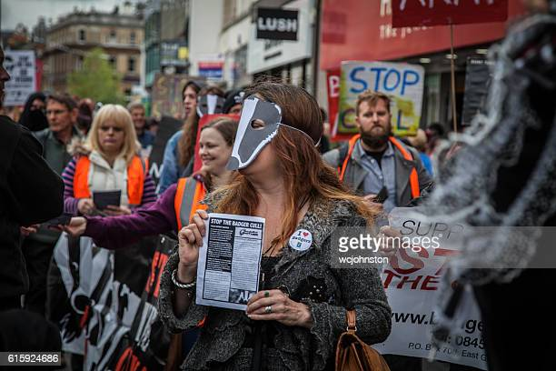 protest march for animal rights - save the badger - animal welfare stock photos and pictures