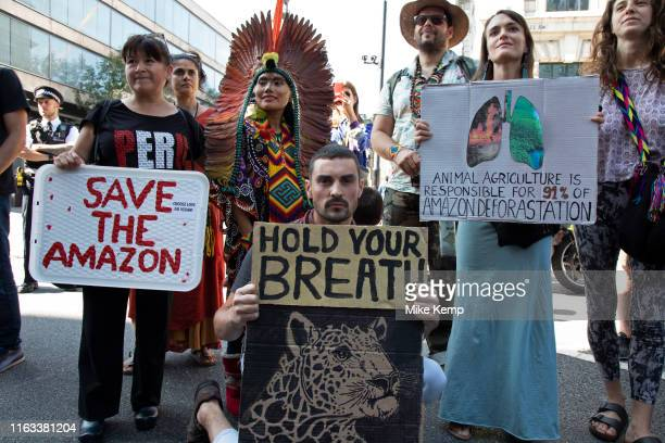 Protest organised by Extinction Rebellion at the Brazilian Embassy against the fires and tree burning in the Amazon rainforest on 23rd August 2019 in...