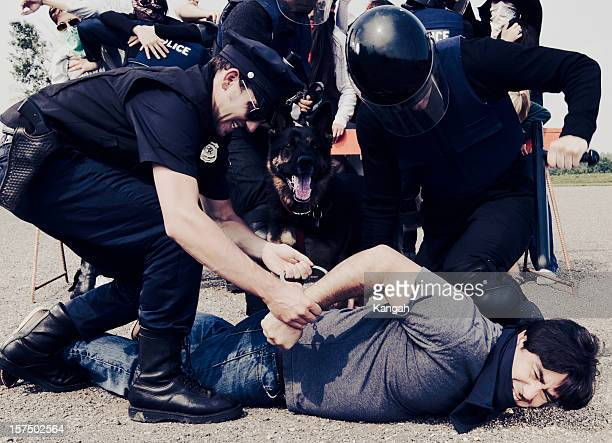 protest - arrest stock pictures, royalty-free photos & images