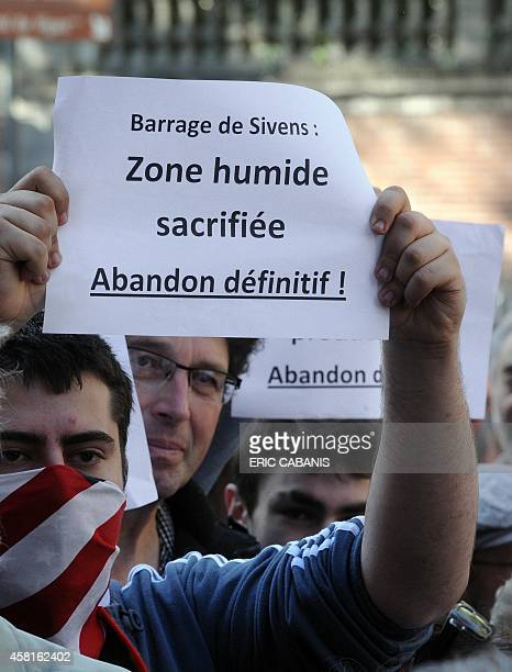 A protester holds a placard reading ''Dam of Sivens Wetland sacrificed Permanent abandonment'' during a demonstration against a controversial dam...