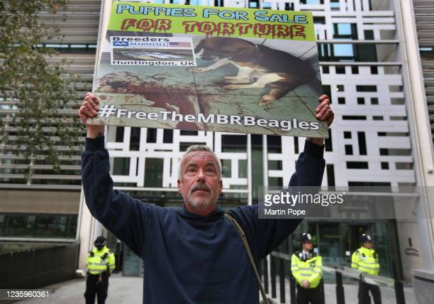Protester holds a sign calling for puppy farms to close outside the Home Office on October 18, 2021 in London, England. Activists from Camp Beagle in...